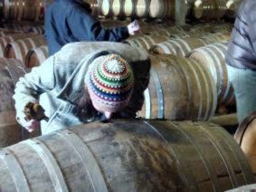 Cognac-Tasting-Tour-1-_2