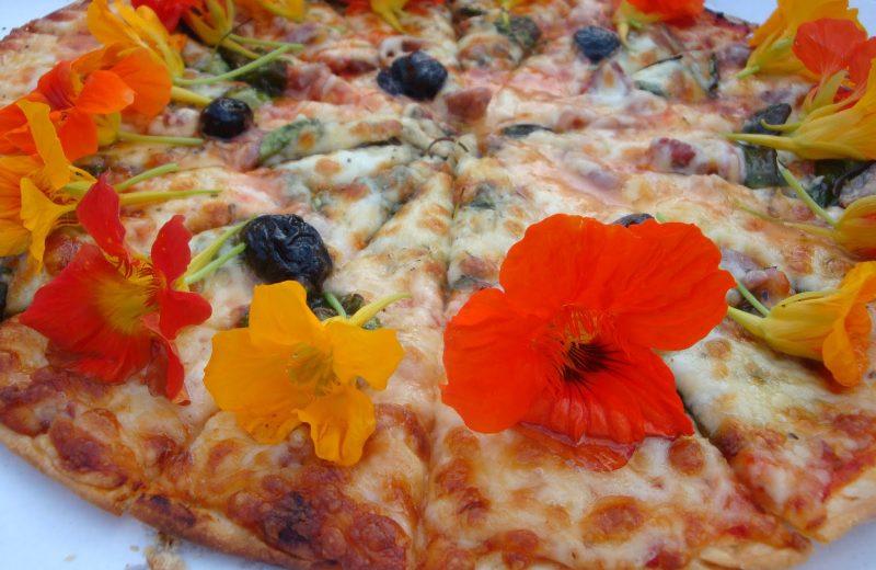 Pizza in the garden à Châteaubernard - 0