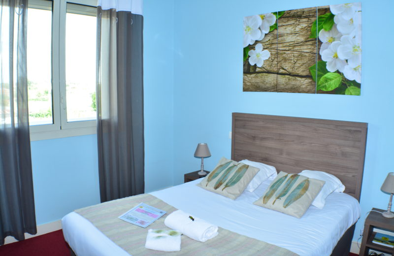 HOTEL-RESTAURANT LE PASSIFLORE à CHATEAUBERNARD - 7