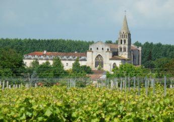 368035-Abbaye-Bassac-vue-2017_1.JPG