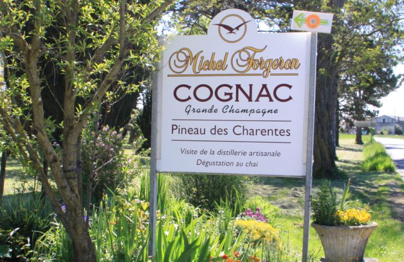 COGNAC FORGERON à SEGONZAC - 0