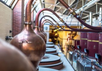 371327-cognac-maison-boinaud-distillerie-2017.jpg