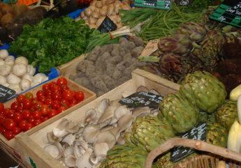 375743-etale-de-legumes-charente-tourisme_1.jpg