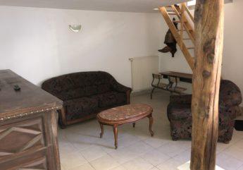 395001-salon.jpg