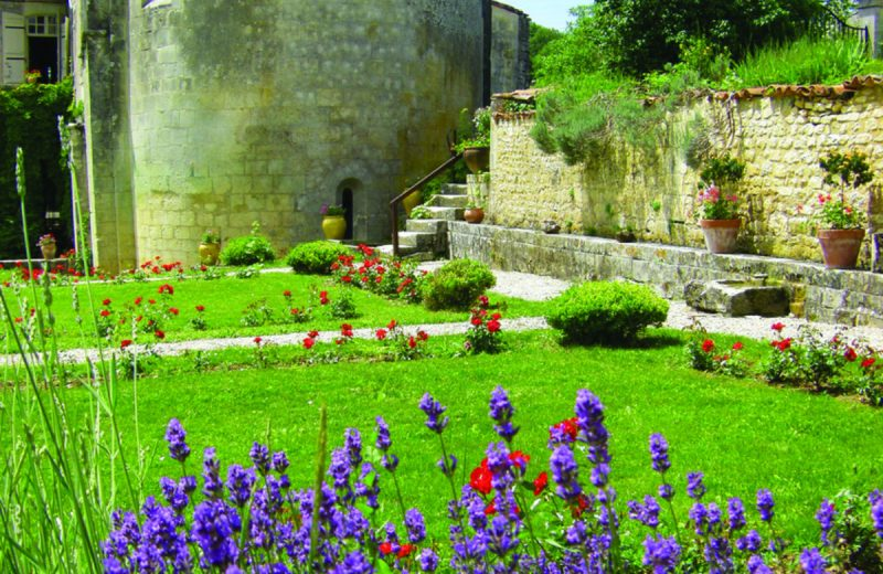 Abbaye de Fontdouce à Saint-Bris-des-Bois - 7