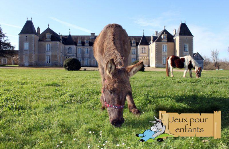 Castle of Panloy à Port-d'Envaux - 0