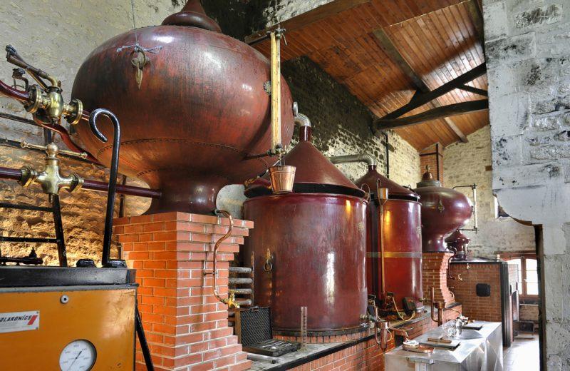 Cognac Drouet à Salles-d'Angles - 1