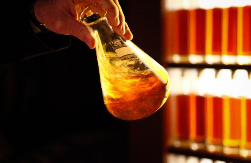 Camus La Grande Marque à Cognac - 7
