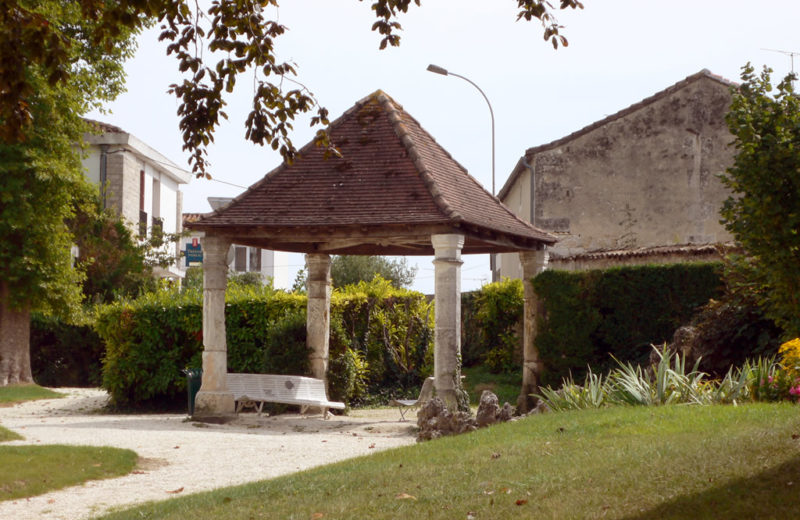 Walk in Châteauneuf-sur-Charente à Châteauneuf-sur-Charente - 3