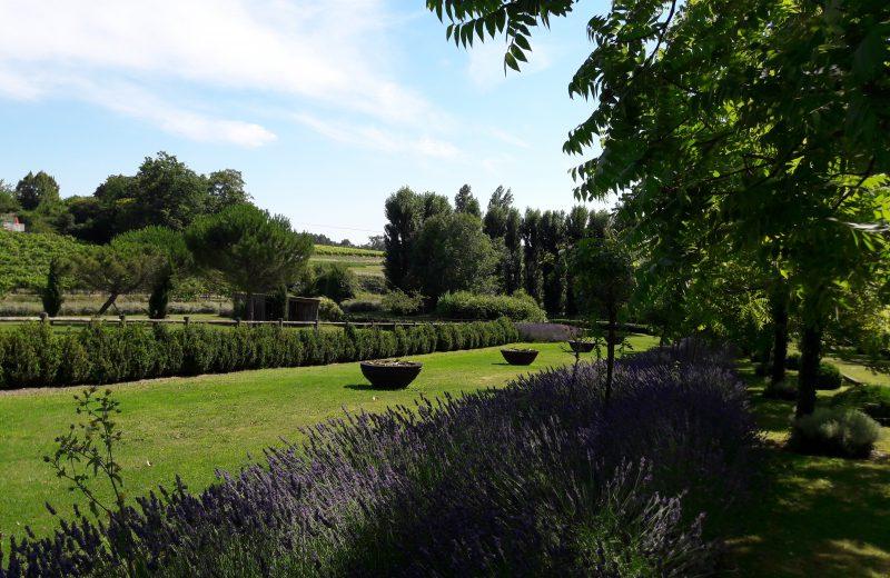 Les Jardins du Chaigne à Bellevigne - 6