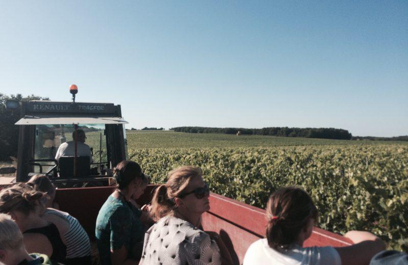 Nos balades en tracteur à Saint-Amant-de-Nouère - 0