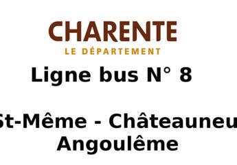 Ligne-bus-8.jpeg
