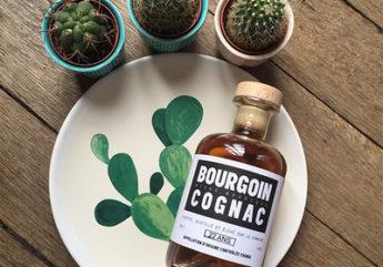 bourgoin-cognac-cactus_1.jpg