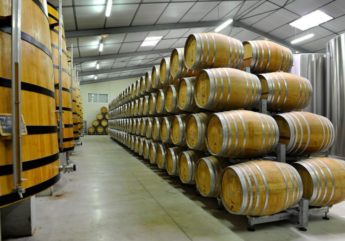 portes-ouvertes-cognac-montifaud-chai-2017-800×520.jpg