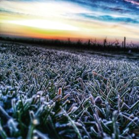vins-charentais-igp-hiver-copyright-thomas-quintard