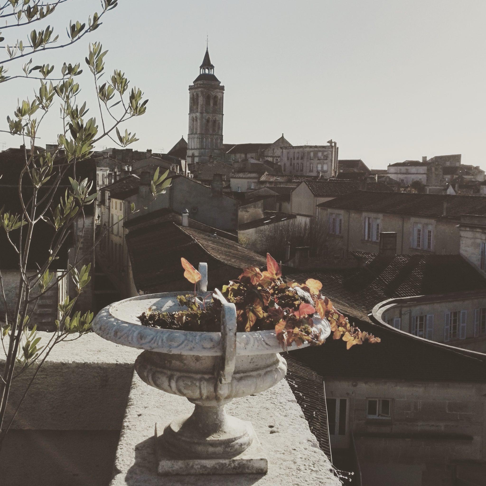 Vue de la terrasse de l'hôtel particulier Bernard de Javrezac à Cognac