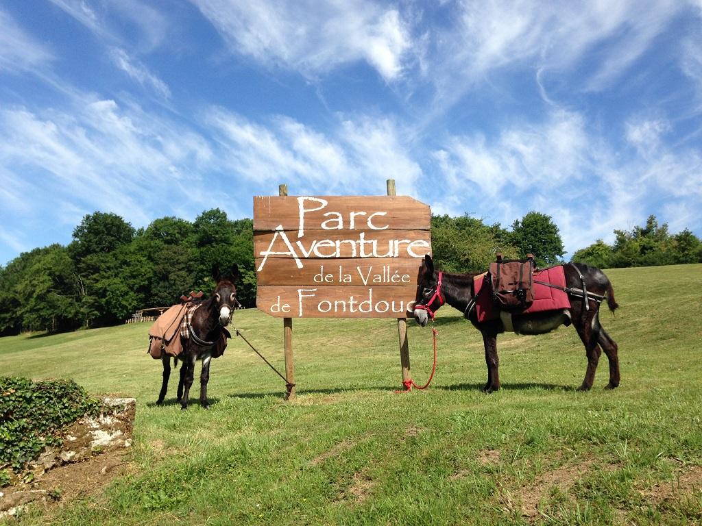 Balade jusqu'au Parc Aventure de Fontdouce avec les ânes de la Rêverie