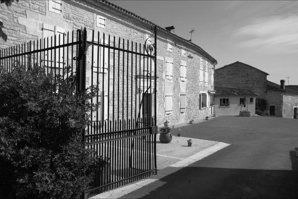 DOMAINE DE LA CHEVALERIE – VIGNOBLE PELLETANT à ST AMANT DE NOUERE - 0