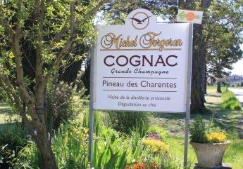 371265-cognac-forgeron-accueil-2017.jpg