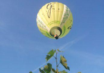 372974-Charente-Montgolfieres-En-vol-2017.jpg