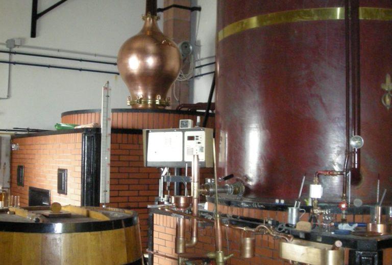 PINEAU COGNAC VIN – EARL JEAN ROUX à SALIGNAC SUR CHARENTE - 4