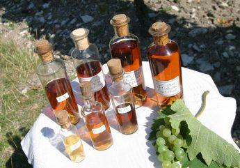374853-cognac-grande-croix-mougne-echantillons.jpg