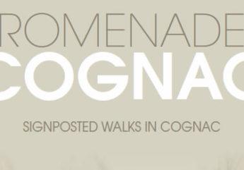 376039-promenades-a-cognac-parcours-pieton.jpg