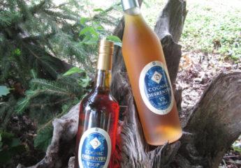 377984-cognac-pineau-desrentes-2017.jpg
