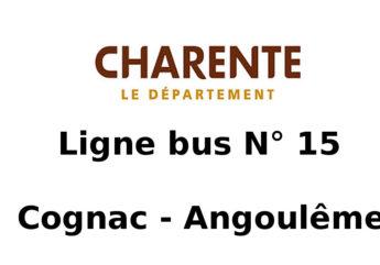 380596-Ligne-bus-15_1.jpeg