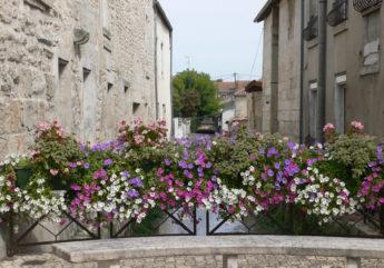 382717-chateauneuf-sur-charente-les-petits-ponts-fleuris_1.JPG