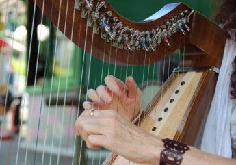 401235-harpe.jpg