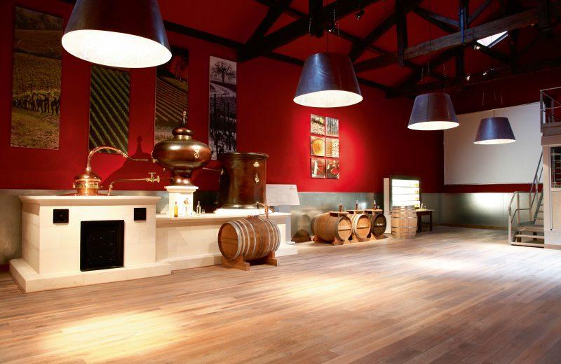 Maison Rémy Martin à Cognac - 3