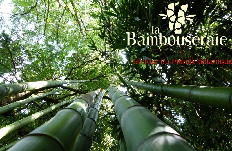 La Bambouseraie à Matha - 0