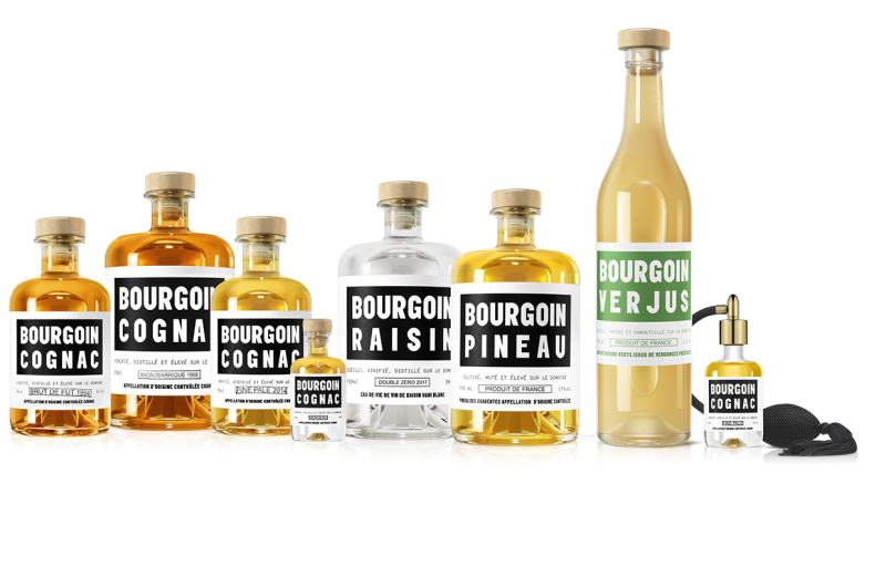 Bourgoin Cognac à Saint-Saturnin - 4