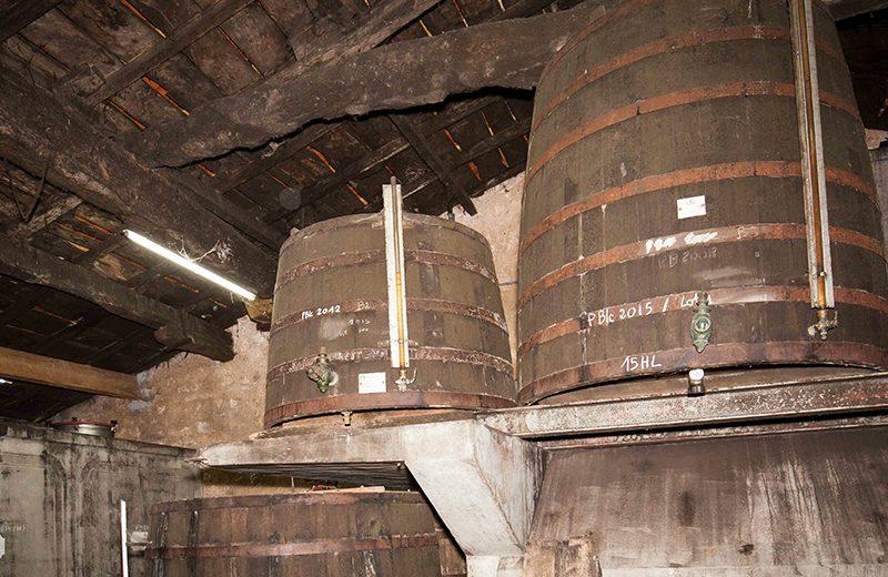 Léonard Pineau Cognac à Mainxe-Gondeville - 4