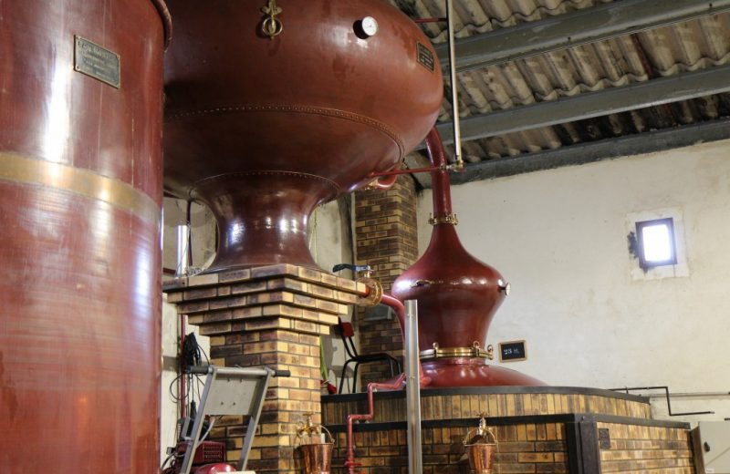 Léonard Pineau Cognac à Mainxe-Gondeville - 2