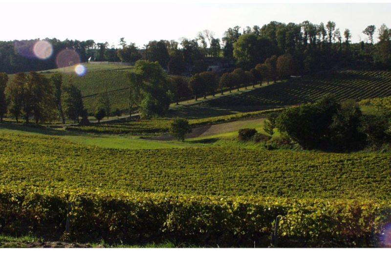 Tesseron Cognac à Châteauneuf-sur-Charente - 0