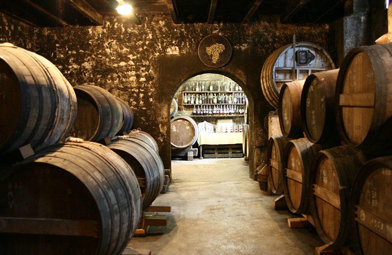 Cognac Painturaud Frères à Segonzac - 2