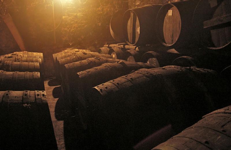 Cognac Pinard & Fils à Foussignac - 3