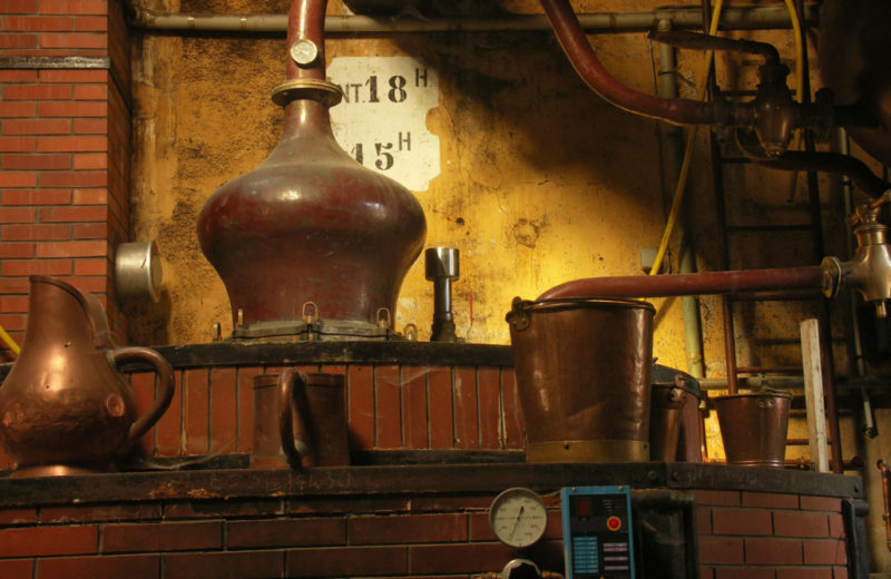 Cognac Pinard & Fils à Foussignac - 2