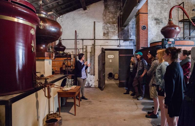 Guillon Painturaud Cognac-Pineau à Segonzac - 1