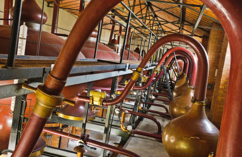 Braastad Cognac à Jarnac - 1