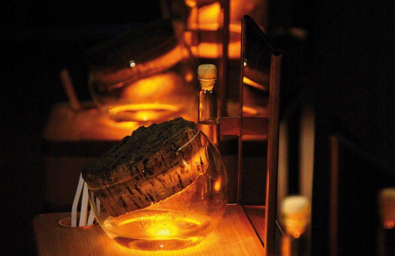 Camus La Grande Marque à Cognac - 1