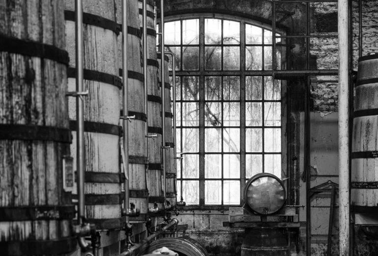 Cognac Frapin à Segonzac - 1
