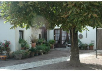 Chez Arlette & Gaston Burgaud