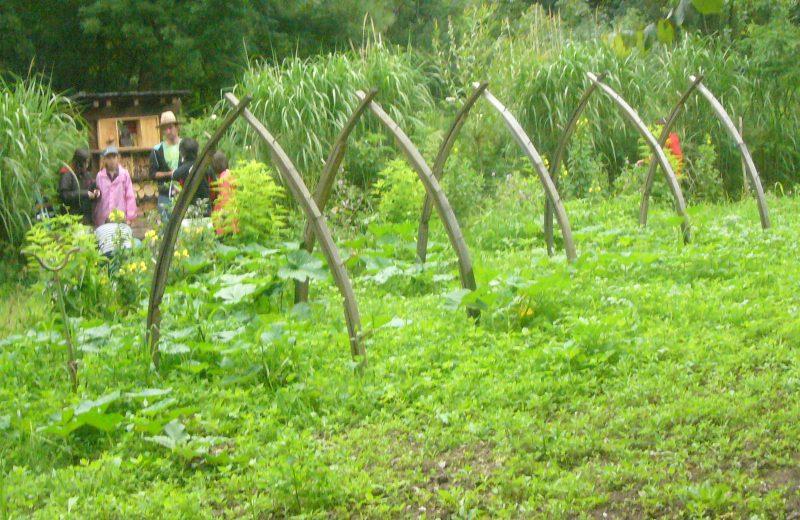 Les Jardins Respectueux à Châteaubernard - 4