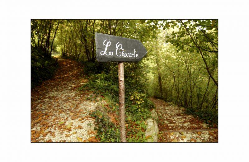 Les Jardins Respectueux à Châteaubernard - 1
