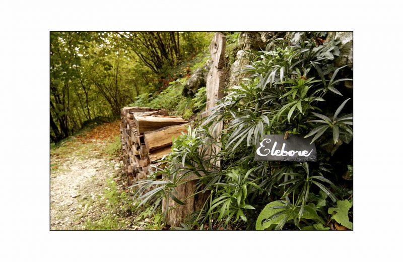 Les Jardins Respectueux à Châteaubernard - 2