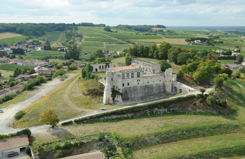 Château de Bouteville à Bouteville - 1