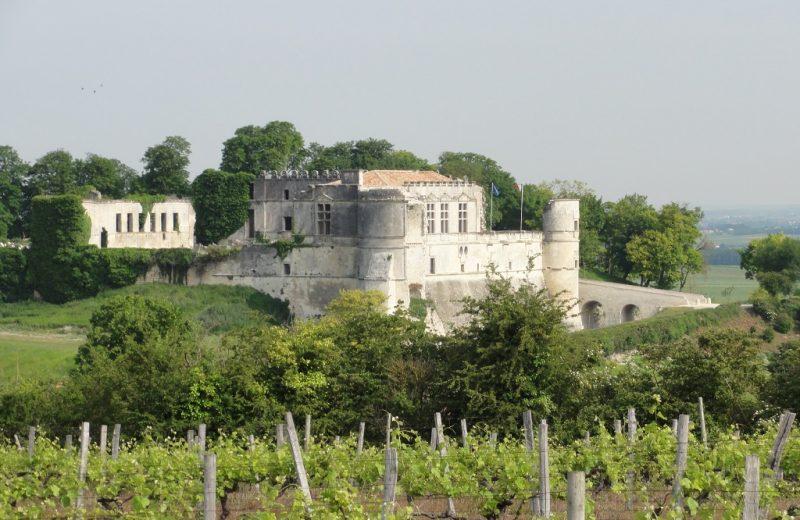 Château de Bouteville à Bouteville - 2